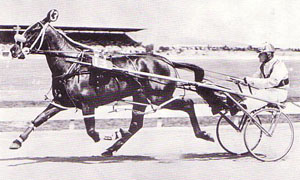 Spry Hanover